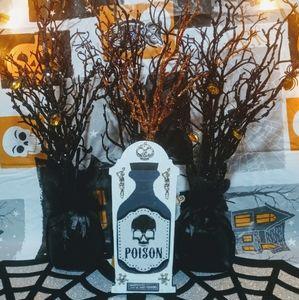 Halloween Gothic Poison Coffin Decoration